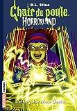 Horrorland, Tome 10: L'effroyable Mme Destin (Chair de poule)