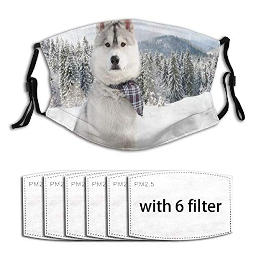 Mokale Face Cover Frost Mountain Winter Forest Animal Husky Dog Cedar Balaclava Unisex Reusable Windproof Anti-Dust Mouth Bandanas Outdoor Camping Motorcycle Neck Gaiter with 4 Filters for Men Women