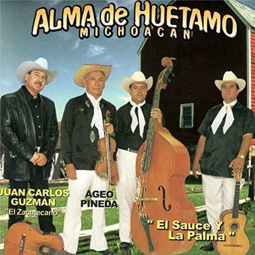 Alma De Huetamo