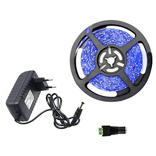 Kit complet Ruban LED Professionnel Flexible - 5 Mètres - 60 LED/M - Couleur BLEU