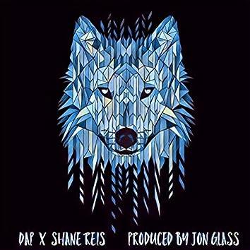 Wolf (feat. Shane Reis)