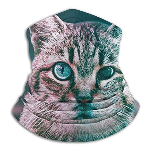 Towel&bag Lindo gato máscara cuello polaina cara bufanda deportes al aire libre negro
