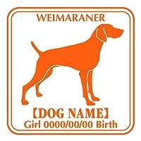 ワラ犬 ワイマラナー ステッカー Eパターン ボーイ アクアブルー(濃い水色)