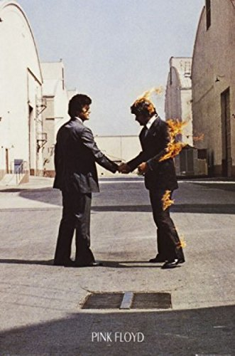 1art1 Pink Floyd Poster - Wish You Were Here (91 x 61 cm)