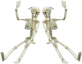 Anditoy 2 Pack 15 كامل الجسم هالوين الهياكل العظمية المفاصل المنقولة الهيكل العظمي اللعب للداخلية في الهواء الطلق زينة هال...