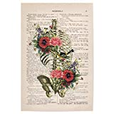 artboxONE Poster 30x20 cm Anatomie Floral Ribcage with