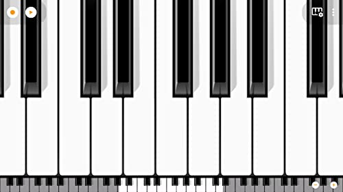 『Mini Piano Pro』の2枚目の画像