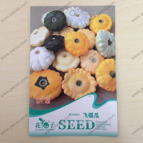 Originales paquet d'ornement légumes fruits Graines, UFO melon graines de citrouille, la floraison à maturité 60 jours, 8 particules de graines / sac