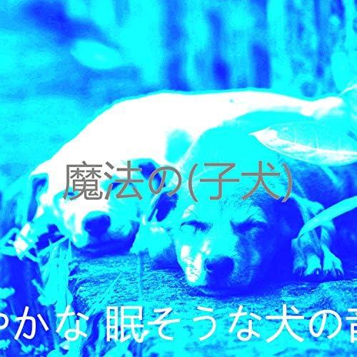 穏やかな 眠そうな犬の音楽