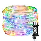 LE Lighting EVER Guirlande Tube Lumineuse LED RGB, Tube Lumineux 10M avec 100LEDs Multi-Color, Lumière Décorative Rouge Vert Bleu Jaune pour Décoration Intérieur, Salle, Fête, Noël, Maison etc.