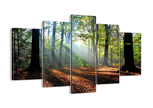 Cuadro sobre Lienzo - 5 Piezas - Impresión en Lienzo - Ancho: 150cm, Altura: 100cm - Foto número 0136 - Listo para Colgar - en un Marco - EA150x100-0136