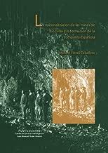 La nacionalización de las minas de Río Tinto y la formación de la compañía española (Spanish Edition)