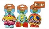 Hartz Frisky Frolic Latex Squeakable Dog Toy - Set...