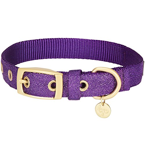 Blueberry Pet The Most Coveted Designer Mixed Metallic Thread Dog Collar in Dazzling Tinsel Purple with Metal Buckle, Small, Neck 23cm-32cm, Adjustable Collars for Dogs