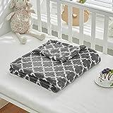 Flannel Fleece Baby Blanket All-Season with Design - Super Ultra Soft Plush Toddler Blanket for Crib -100% Microfiber Polyester (Gray, 27'x39')