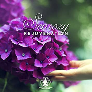 Sensory Rejuvenation - Soothing Sounds for Massage & Yoga, Wellness Therapy, Healing of Body, Mind and Spirit