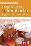 Il potere curativo del tè Kombucha. I benefici, le indicazioni per prepararlo in casa, le ricette