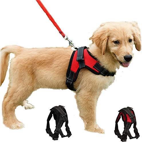 Arnés para perro de lujo, sin tirar, transpirable, ajustable, sin plomo incluida, para perros pequeños, medianos y grandes, lo mejor para entrenar a caminar (S rojo))