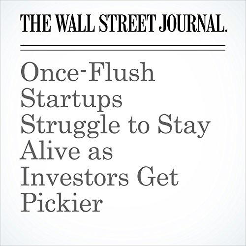 Once-Flush Startups Struggle to Stay Alive as Investors Get Pickier copertina