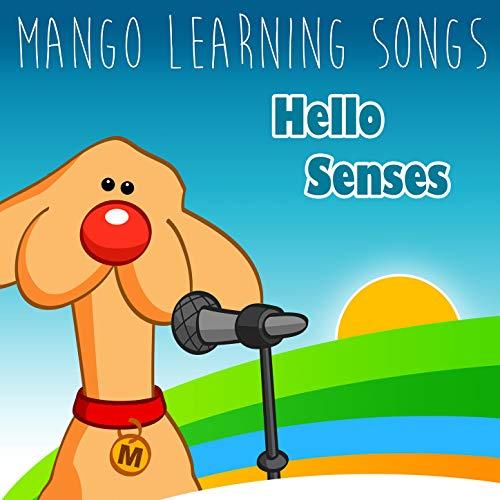 Hello Senses