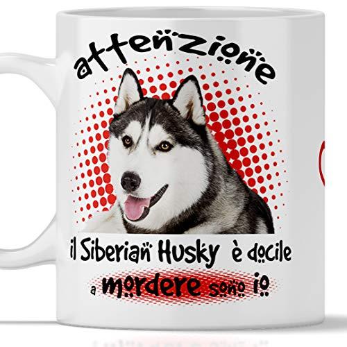 Taza de perro Husky divertida. El perro es docile a morder soy yo. Adecuada para desayuno, tés, tisana, café, capuchino. Gadget taza Siberian Husky también como idea de regalo original y simpática