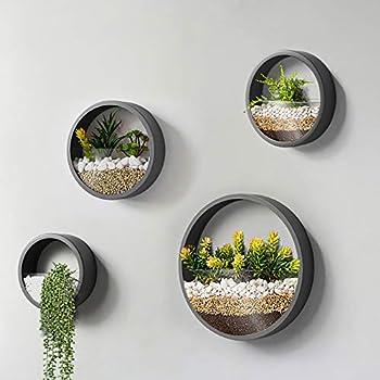 Best wall mounted terrarium Reviews