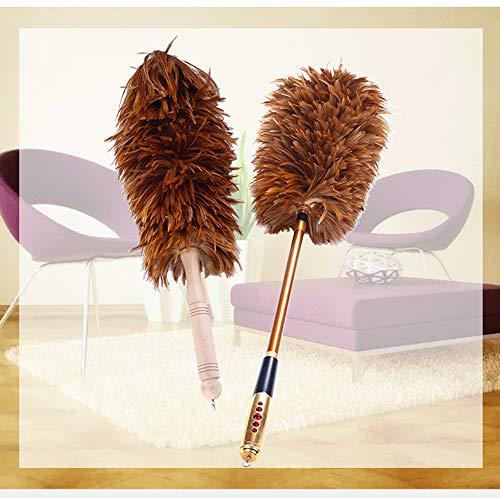 LBWLB Struzzo stofdoek, Struzzo stofdoek met veer, zacht plug, reiniging en plumeau eenvoudig en effectief
