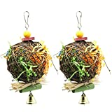 PINCHUANG SHANTU 2 Pack Bird Chewing Toys Foraging Shredder Toy Parrot Cage Shredder Toy Foraging Hanging Toy for Cockatiel Conure African Grey Amazon