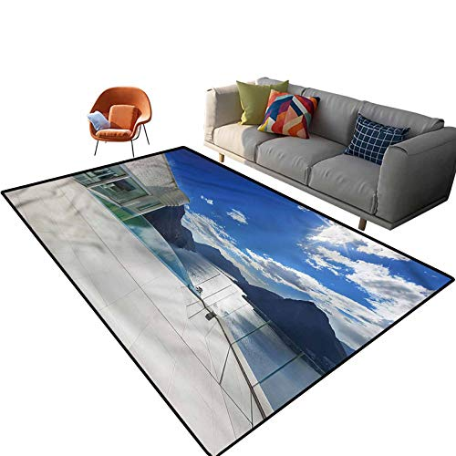 Indoor Room Patio Area Rugs,6'x 9',Modern Summer Penthouse Floor Rectangle Rug with Non Slip Backing for Entryway Living Room Bedroom Kids Nursery Sofa Home Decor