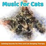 Kitten Bed (Background Music for Lonely Cats)
