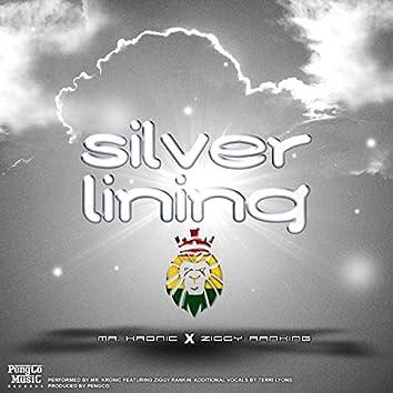 Silver Lining (feat. Ziggy Ranking)