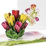 """PaperCrush Pop-Up Karte Blumen """"Bunte Tulpen"""" [NEU!] - 3D Blumenkarte für Freundin oder Mutter (Geburtstagskarte, Runder Geburtstag, Bleib Gesund) - Popup Glückwunschkarte mit Blumenstrauß"""