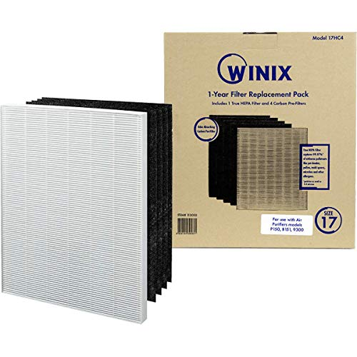 Genuine Winix 113050 Replacement Filter C for P150 Air Purifier