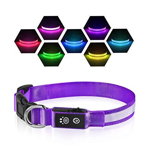 PcEoTllar LED Leuchthalsband Hunde Halsband USB Wiederaufladbar Wasserdicht 7 Farbwechsel Halsband Hund Klein Groß Mittel Super Helle Sicherheit für Die Nacht - Lila - M