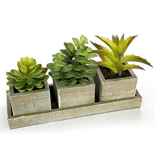 Mygift - Set di 3 piante grasse artificiali realistiche con vasi quadrati in legno marrone in stile rustico e vassoio rettangolare