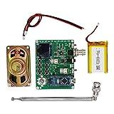 B Blesiya Kit de práctica PCB módulo Receptor de Radio FM estéreo inalámbrico para tu Bricolaje (Paquete de 1 Juego) - Tipo 2