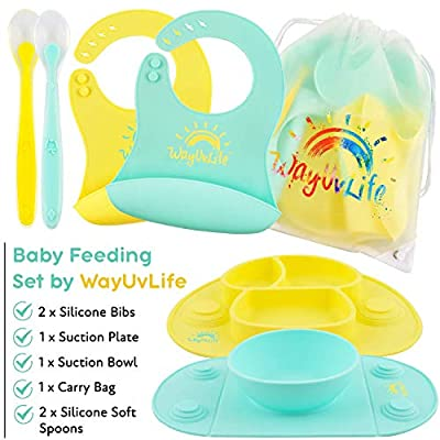 7 Pc Toddler and Baby Feeding Set with 2 Baby Spoons and Silicone Baby Bibs, Plus Baby Bowl and Plate with Suction and Travel Bag by WayUvLife; Baby Led Weaning Dishes Great for Self Feeding