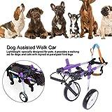 Zoom IMG-1 carrozzina per cani regolabile 2