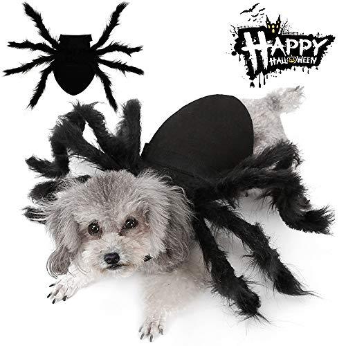 Easyme disfraz de araña de Halloween para mascotas, disfraz de araña de peluche con hebilla ajustable para el cuello (mediano)