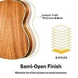 Immagine 2 donner ukulele concerto 23 pollici