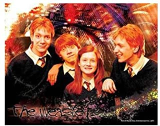 Visual Echo 3D Effect Harry Potter The Weasleys 100pc Lenticular Puzzle