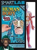 [スマート ラボ]Smart Lab You Explore It: Human Body Model 06428 [並行輸入品]