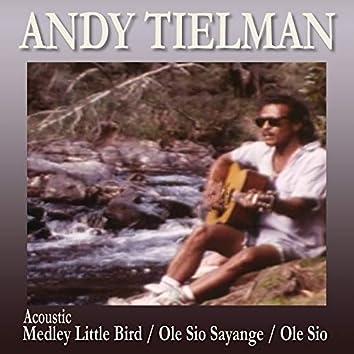 Medley: Little Bird / Ole Sio Sayange / Ole Sio (Acoustic)