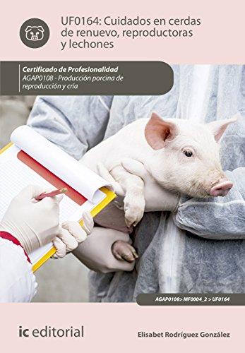 Cuidados en cerdas de renuevo, reproductoras y lechones.