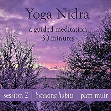 Yoga Nidra Session 2: Breaking Habits