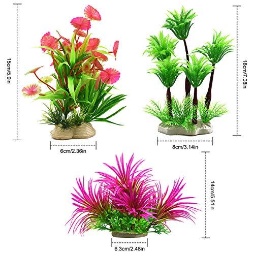 Dokpav Plantas plásticas