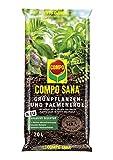 Compo Sana Substrato di Coltura utilizzando Materiali organici del Suolo, Sostanze vegetali, Perlite, fertilizzanti, Marrone, 20 l