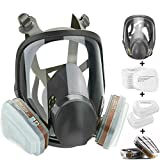 Best n95 rated respirator mask - HAOX 15in1 Full Face Large Size Respirator,Full Face Review