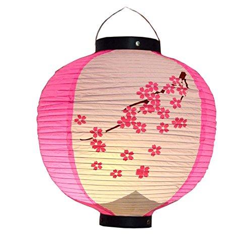 Lanternes accrochantes de style japonais de lanternes de restaurant de barre de sushi pour Hom / Bar, Rose Sakura