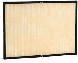 RabbitAir Genuine Classic BioGS HEPA Filter Replacement (for: SPA-421A & SPA-582A)
